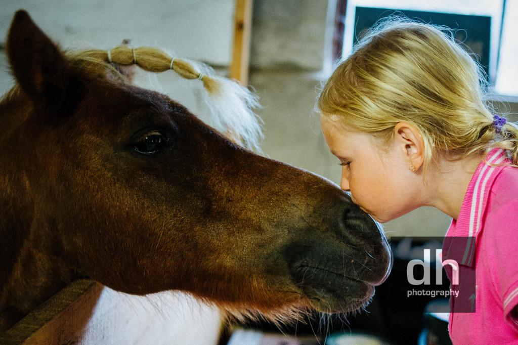 Ponny184DH kopia
